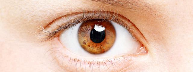 女性の綺麗な目